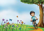 Cycling,Outdoors,Lifestyles,Small,Image,Activity,Animal,Vine,Leaf,People,Blue,Flying,Little Boys,Tree,Insect,Hill,Men,Hobbies,Crawling,Child,Rolling,Computer Graphic