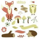 Hedgehog,Animal,Forest,Wood - Material,Vector,Autumn,Ilustration,Acorn,Tree,Branch,Nature,Leaf,September,Wildlife,foxy,Season,Owl,Cute,Invitation,hedgehod,October,Fir Tree,Postcard,Label,Tree Stump,Red