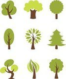 Tree,Leaf,Branch,Growth,Shape,Set,Bush,Season,Silhouette,Ornamental Garden,Plant,Forest,Vector,Design,Springtime,Organic,Bonsai Tree,Design Element,vector tree,Ornate,Ilustration,Abstract,Environmental Conservation,Nature,Recycling,Elegance,Style,Computer Graphic,Icon Set,Concepts,Green Color,Tree Trunk,Symbol,Oak Tree,Botany,Environment,template