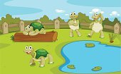 Collection,Water,Pond,Resting,Crawling,Water Lily,Log,Cute,Fun,Turtle,kid's,Freshwater,Summer,Reptile,Grass,Animal Shell,Glade,Sky,Animal,Lake,Fence,Weed,Tortoise,Characters,Mascot,Series,Four Animals,Animal Themes,Terrapin
