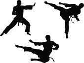 Karate,Silhouette,Martial Arts,Back Lit,siloette,Flying,Kicking,Aikido,Kung Fu,High Up,Suit,giko,Keikogi,martial,Karategi,Vector,Men,Mid-Air,Wushu,Middle,Dogi,Gi,White,Kimono,Judo,Sport,Uniform,kenpo,Outline,Black Color,Action,Muttahida Majlis-e-Amal,Organized Group,Punching,Belt,Jumping,Ilustration