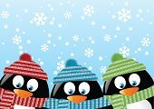 Winter,Penguin,Hat,Animal,Fun,Scarf,Cute,Friendship,Cartoon,Animals In The Wild,Snow,Bird,Red,Vector,Ilustration,Material,Cheerful,Snowflake,Clothing,Image,Nature,Woven,Striped,Wildlife,Black Color