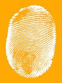Fingerprint,Dirty,Sketch,Ilustration,Stained,Men,Signature,Biometrics,Human Hand,Paint,Identity,Variation,Abstract,Unhygienic,Thumb,Security,Creativity,Human Finger,People,Body,Imitation,Human Skin,Track,Label,Drawing - Activity,Computer Graphic,Handprint