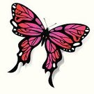Butterfly - Insect,Insect,Animal,Isolated,Nature,Pink Color,Backgrounds,Multi Colored,White,Red,Vector