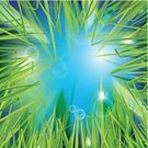 Grass,Vitality,Freshness,Abstract,Ilustration,Season,Morning,Blinking,Growth,Shape,Leaf,Day,Summer,Nature,Botany,Multi Colored,Blue,Shiny,Meadow