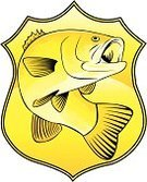Fishing,Bass,Sea Bass,Striped Bass,Fish,Hunting,Authority,Badge,Sea Bass,Seafood,Vector,Gold Colored,Ilustration,Animal Mouth,Freshwater Fish,Law,Food,Single Object,Animal,Isolated On White,Outdoors,Objects/Equipment,Swimming Animal,No People,Color Image,Wildlife