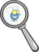 Magnifying Glass,Ilustration,Cartoon,Color Image,Single Object,Painted Image,Illustrations And Vector Art,Isolated On White,Design,Vector,Paintings,Multi Colored,Insect,Drawing - Art Product,Clip Art,Vector Cartoons,Fly,Image,Glass - Material,Image Type,Digitally Generated Image,Computer Graphic