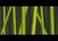 Bamboo,Bamboo,Pole,Pattern,Forest,Asia,Nature,Plant,Striped,Illustrations And Vector Art,Fashion,Beauty And Health,In A Row,East Asian Culture,Green Color,Beauty In Nature