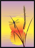 Dragonfly,Sea,Sunset,Above,Tranquil Scene,Beach,Water,Serene People,Backgrounds,Pond,Grass,Lake,Reed - Grass Family,Vector,Sun,Bay Of Water,Water's Edge,Reflection,Ilustration,Green Color,Flower,Design,Nature,Insect,Computer Graphic,Flying,Harmony,Silence,Sky,Painted Image,Horizon,Sunlight,Concepts And Ideas,No People,Color Image,Uncultivated,Failure,Horizon Over Water,Nature,Plants,Stem,Light - Natural Phenomenon,Plant,Wing,Vertical,Seascape,Part Of,Red