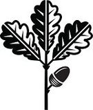 Acorn,Oak Tree,Leaf,Tree,Oak,Branch,Non-Urban Scene,Symbol,Woodland,Black And White,Twig,Growth,Timber,Ilustration,Hardwood Tree,Nature,Cultivated,Forest,Rural Scene,Computer Graphic,Sign,Environment,Vector,Hardwood,Plants,Formal Garden,Nature