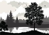 Tree,Silhouette,Bush,Landscape,Forest,Pond,River,Maple Tree,Lake,Pine Tree,Bird,Black Color,Rural Scene,Scenics,Black And White,Sky,Grass,Outline,Leaf,Outdoors,Gray,Plant,Woodland,Vector,Night,Summer,Season,Copse,Fir Tree,Horizontal,Coniferous Tree,Nature,Computer Graphic,Spruce Tree,Dark,No People,Environment,Cut Out,White,Wildlife,firtree,Crown,Branch,Deciduous Tree
