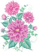 Flower,Chrysanthemum,illustrated,Single Flower,Wedding,Sketch,Cards,Design,Floral Pattern,Pencil Drawing,Petal,Engraving,Textured,Ink,Ilustration,hand drawn,Borough Of Paint,Single Line,Computer Graphic,Backgrounds,Pink Color,Isolated,Blooming,Dividing Line,Waiting In Line,Vector,template,chrisantemum,Sketch Restaurant,Drawing - Art Product,Wreath,Paint,Bud,Laurel Wreath,Gift,Pattern,Textured Effect,Design Professional,Branch,Birthday,Leaf,Red,Budweiser,Putting Green,Greeting Card,Style,Green Color,Decor,Image,Design Element,Nature,Art