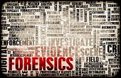 Forensic Science,Detective,Digitally Generated Image,Criminal,Security,Scientific Experiment,Fingerprint,Identity,Technology,Occupation,Biometrics,Urban Scene,Analyzing,Crime,Data,Education,Computer,Tracing,Searching,Criminal Investigation,Collection,Creativity,Futuristic,Backgrounds,Abstract,Research,Concepts,Science,Expertise,Ilustration