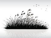 Reed - Grass Family,Silhouette,Plant,Wind,Bird,Sky,Grass,Paintings,Backgrounds,Drawing - Art Product,Black Color,Decoration,Beauty In Nature,Ilustration,Outdoors,Painted Image,Landscape,Leaf,China - East Asia,Cultures,Nature,Chinese Culture