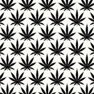 Marijuana Plant,Marijuana,Pattern,Backgrounds,Cannabis - Narcotic,Indian Culture,Silhouette,Vector,Symbol,Plant,Criminal Activity,Joint,Herb,ganja,Cultures,Biological Culture,Computer Graphic,thc,Smoking,Skunk,Herbal Medicine,Ilustration,Black Color,Narcotic,Design,Legalization,Hashish,Leaf,Nature,Isolated,Relaxation,Shape,White,Addiction