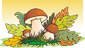 Mushroom,Fungus,Forest,Toadstool,Ilustration,Autumn,Vector,Meadow,Computer Graphic,Concepts,Nature,Season,Decoration,Ideas,Green Color,Three Objects,Three People,Grass
