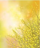 Bright,Sun,Bouquet,Shiny,Nature,Defocused,Plant,Easter,Colors,Yellow,Bright,Flower,Sky,Branch,Season,Sun,Springtime,Sunlight,Acacia Tree,Illuminated,Backgrounds,Frame,Illustration,Beauty In Nature,No People,Vector,Holiday - Event,March,March - Month,Sunny