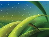 Rain,Grass,Environmental Conservation,Water,Flower Bed,Formal Garden,Vegetable Garden,Falling,Wet,Blue,Creativity,Nature,Green Color,Dew,Weed,Backgrounds,Lawn,Plant,Leaf,Stem,Painted Image,Ilustration,Art,Weeding,Raindrop,Vector,Front or Back Yard,Meadow,Drop,Outdoors,Drawing - Art Product