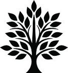 Leaf,Tree,Plant,Silhouette,Season,Symbol,Tree Trunk,Nature,Ayurveda,Vector,Growth,Botany,Branch