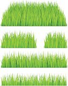 Green Color,Grass,Field,Springtime,Lawn,Design,Isolated On White,Isolated,Summer,Meadow,Rural Scene,White Background,Illustrations And Vector Art,Vector,No People,Nature,Backgrounds,Plant
