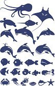Whale,Octopus,Dolphin,Hammerhead Shark,Fishing Industry,Shark,Clown,Turtle,Stingray,Vector,Squid,Jellyfish,Hedgehog,Sperm Whale,Aquatic Mammal,Fish,Crab,Underwater,Set,Water,Animal,Starfish,Sea Horse,Sea,Seafood,Isolated,Ilustration,Squid,Fishing,Computer Icon,Swordfish,Nature