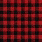 Plaid,Lumberjack,Seamless,Wool,Backgrounds,Wallpaper Pattern,Retro Revival,Pattern,Textile,Old-fashioned,Old,Red,Male,Coat,1940-1980 Retro-Styled Imagery,Black Color,Repetition,Fashionable,Cold - Temperature,Material,Jacket,Abstract,Textured Effect,Vector,Backdrop,Cool,Small,Fashion,Clothing,Elegance,Smart Casual,Men,Retriever,Casual Clothing,Puppy