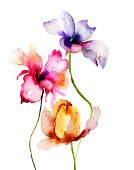 Flower,Watercolor Painting,Painted Image,Ilustration,Lily,Tulip,Red,Yellow,Blossom,Plant,Flower Head