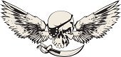Pirate,Human Skull,Artificial Wing,Sword,Wing,Criminal,Sky,People,Animals And Pets,Objects/Equipment