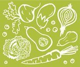 Vegetable,Leaf,Garnish,Ilustration,Groceries,Healthy Eating,Vector,Cross Section,Vegetarian Food,Organic,Common Beet,Onion,Green Color,Drawing - Art Product,Vegan Food,Freshness,Set,Butternut Squash,Elegance,Eggplant,Radish,Cabbage,Ingredient,Backgrounds,Individuality,Variation,Savoy Cabbage,Squash - Vegetable,Carrot,Lettuce,Root Vegetable,White Outline,Green Pea,Food,Cool