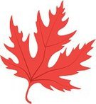 Maple Tree,Computer Icon,Symbol,Maple Leaf,Autumn,vector illustration,Tree,Orange Color,Vector,Nature,Leaf