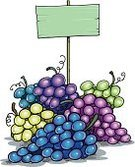 Food,Freshness,Red,Fruit,Vine - Plant,Ripe,Grape,Illustration,No People,Vector,Juicy