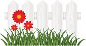 Flower Bed,Fence,Nature,Farm,White,Green Color,Colors,Red,Grass,Vector,Wood - Material,Timber,Backgrounds,Flower,Springtime,White Background,Isolated,Summer,Outdoors,Plant,Rural Scene