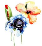 Ilustration,Flower,Watercolor Painting,Flower Head,Flowering Plant,Image,Flower Arrangement,Painted Image,Blossom