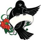 Feather,Ribbon,Design,Tattoo,Animal Body Part,Spider Web,Bird,Black Color,Red,North American Blackbird,Sky,Cloud - Sky,Rose - Flower,Perching,Animal Wing,Illustration,Mascot,Copy Space,Vector,Brewer's Blackbird,Rose,Banner