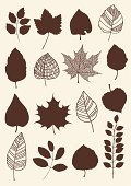 Leaf Vein,Variation,Leaf,Dark,Shape,Red,Bush,Silhouette,Plant,Order,Tree,Computer Graphic,herbarium,Set,Vector,Ilustration,Carving - Craft Product,Collection,Individuality