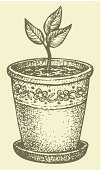 Pencil Drawing,Drawing - Art Product,Springtime,Drawing - Activity,Sapling,Ilustration,Engraving,Engraved Image,Seedling,Rustic,Vector,Flower Pot,Contour Drawing,Homemade,Symbol,Line Art,Pen,Horticulture,Nature,Silhouette,Bouquet,Gift,Ornate,Leaf,Decoration,Pansy,Backgrounds,Growth,Inks On Paper,Still Life,Decor,Craft,freehand,Vase,Pencil,Formal Garden,Ink,Outline,Art,Art Product,Twig,Plant,Scribble,Botany,Creativity,Gardening,Computer Graphic,Hatching,Flower