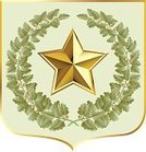 Star - Space,Military,Gold Colored,Army,Gold,Badge,Metal,Insignia,Award,Symbol,Sign,Oak Tree,Banner,Shield,Computer Graphic,Ilustration,blazon,Winning,Leaf,Majestic,escutcheon,Green Color,Success,Decoration,Physical Pressure,Power,Armoury,Branch,Persuasion,Honor,Authority,Clip Art,People,Objects/Equipment,Ceremony,Illustrations And Vector Art