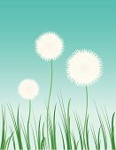 Dandelion,Pollen,Grass Family,Symbol,Vector,Flower,Spore,Dreamlike,Grass,Single Flower,Wind,Childhood,Springtime,Daisy,Ilustration,Joy,Outdoors,Season,Botany,Plant,Seed,Design,Summer,Lifestyles,Landscape,Sky,Green Color,Backgrounds,Environment,Elegance,Shape,Motivation,Wildlife Reserve,Beauty In Nature,Fog,Day,Beauty,Illustrations And Vector Art,Vacations,Blue,Nature,Concepts And Ideas,Inspiration,Travel Locations,Time,Style