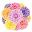 Dahlia,Red,Nature,Colors,Pink Color,Bouquet,Plant,Decoration,Vector,Beauty In Nature,Abstract,Ornate,Blossom,Magenta,Design Element,Ilustration,Floral Pattern,Color Image,Flower,Flower Head,Wreath,Design,Blossoming,Part Of,Orange Color,Curve,Chrysanthemum,Growth,Multi Colored,Yellow,Petal