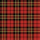 Tartan,Vector,Plaid,Pattern,Yellow,Black Color,Simplicity,Symmetry,Material,Backgrounds,Garment,Decor,Design,Seamless,Classic,Tile,Decoration,Textile Industry,Red,Backdrop,Textile,Striped,Cultures,Fashion,Textured,Abstract,Checked,Fiber,Geometric Shape,Ilustration,Color Image