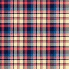 Plaid,Pattern,Vector,Seamless,Striped,Textured,Tartan,Pink Color,Textile,Design,Yellow,Blanket,Cultures,Tile,Color Image,Checked,Classic,Symmetry,Backgrounds,Simplicity,Geometric Shape,Material,Blue,Decoration,Garment,Decor,Red,Backdrop,Abstract,Fiber,Ilustration,Fashion,Textile Industry