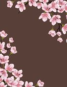 Cherry Blossom,Flower Head,Flower,Tree,Springtime,Drawing - Art Product,Branch,Frame,Vector,Ilustration,Blossom,Cherry