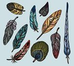 Bird,Feather,Animal,Decoration,Set,Nature,Part Of,Ilustration,Collection,Multi Colored,Colors,Vector