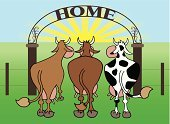 Cow,Animal Ear,Grass,Arrival,Herd,Land,Ranch,Field,Tame,Hoof,Ox,Fence,Cartoon,Horned,The End,Residential Structure,Vector,Mobility,Three Objects,Mammal,Looking,Humor,Sunlight,Travel,Sky,Sun,Farm,Ornate,Ilustration,Extreme Terrain,Territorial,Udder,Meadow,acreage,Spotted,Journey,Gate,Tail,Cattle,Pasture,Animal,Arch