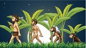 Computer Graphic,Little Boys,Male,Image,Surrounding,White,Outdoors,Men,People,Tree,Brown,Leaf,Long,Monkey,Family Tree,Ape,Night,Plant,Nature,Constellation,sparking,Ecosystem,Fullmoon Maple,Circle,Sphere,Star - Space,Star Shape,Green Color,Weed,Axe,Banana,Mammal,Sky,Senior Adult,Grass