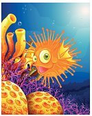 Sea,Fish,Coral,Underwater,Float,Isolated,Swimming Animal,Purple,Yellow,Backgrounds,Carnivore,Bubble,Blue,Hell,Below,River,Reef,Condensation,Breath Vapor,Animals Hunting,Lake,Image,Deep,downunder,Orange Color,Fossil,Computer Graphic,Puffer Fish,Seafood,Scenics,Pets,Lifestyles,Animal,Lavender Coloured