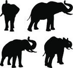 Black,Large,Large,Symbol,Nature,Animal Wildlife,Back Lit,Africa,Animal,Walking,Standing,Animals In The Wild,Mammal,Black Color,White Color,Elephant,African Culture,Plan,Cut Out,Illustration,Group Of Objects,Vector,African Music,Plan