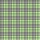 Vector,Plaid,Textured,Fashion,Ilustration,Fiber,Backdrop,Geometric Shape,Textile,Decor,Seamless,Design,Cultures,Abstract,Striped,Green Color,Checked,Pattern,Material,Decoration,Garment,Tartan,Classic,Black Color,White,Tile,Color Image,Symmetry,Backgrounds,Simplicity,Textile Industry