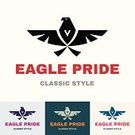 Eagle - Bird,Wing,Sign,Computer Icon,Symbol,Business,New Business,Bird,Finance,Flying,Branding,Computer Graphic,Backgrounds,Creativity,Speed,Identity,Shape,Corporate Business,Ideas,Modern,Classic,Eagle Symbol,Bank,Classic Style,Design Element,Inspiration,Beautiful,Sparse,Pride,Concepts,New,Transportation,Funky,Vector,corporate identity,Design,Abstract,Insignia,Ilustration,vector symbol