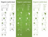 Lamb,Lamb,Symbol,Cutting,Butcher,Factory,Number,Meat,Classic,Rack,Outline,Steak,Organic,Conceptual Symbol,Raw Food,chump,Label,Infographic,Cattle,Pride,Restaurant,Conspiracy,Blackboard,Package,Green Color,Ilustration,European Union,Food And Drink,Box - Container,Cross Section,Animal,region,Retro Revival,Set,Healthy Eating,Diagram,flank,Food,Vehicle Part,Menu,Barbecue Grill,Dieting,Animal Leg,Industry,Red,Freshness,Domestic Animals,Loin,Butcher's Shop,Shank,Rib,Shoulder